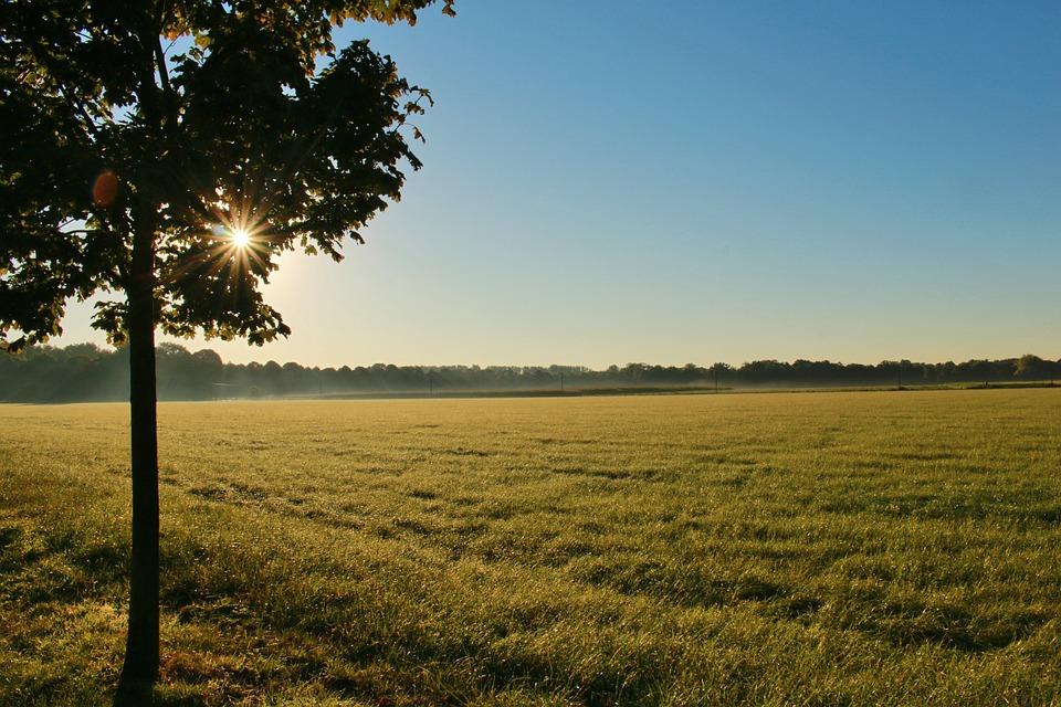 Bagaimana Cara Memaksimalkan Keuntungan Tanah Kosong Jadi Properti Produktif