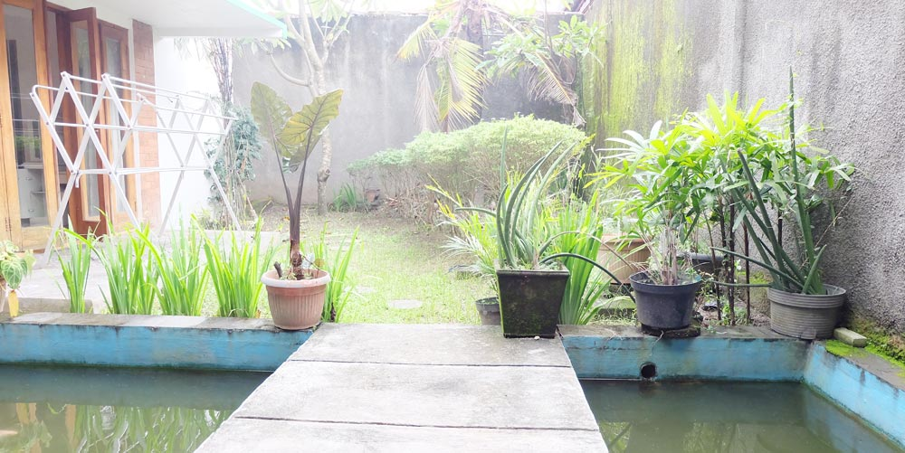 Homestay di Bali