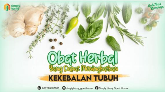 Obat Herbal Yang Dapat Meningkatkan Kekebalan Tubuh
